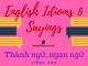 English Idioms & Sayings